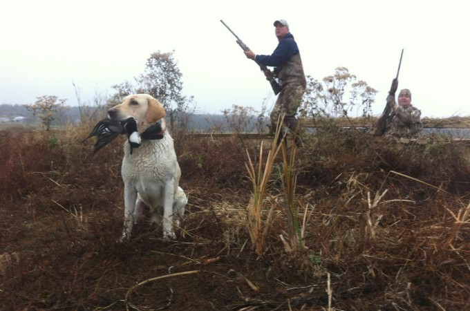 Duck hunting license in oklahoma free programs for Oklahoma fishing license cost